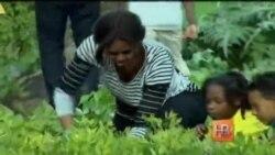 Что растет в огороде супруги Обамы