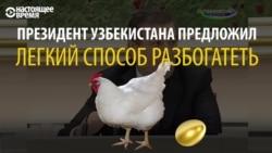 Куриная экономика президента Узбекистана