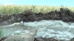 В Кыргызстане из-за нехватки воды может погибнуть урожай