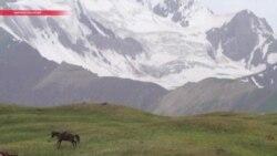 Взгляд на кыргызстанские выборы из Москвы: что дальше?