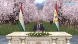 Где президент Таджикистана? Его с 12 марта не видели на публике