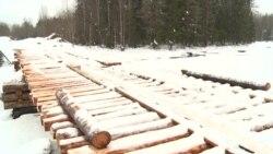 Жители поселка в Карелии сами построили мост. Теперь боятся, что это признают самоуправством
