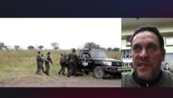 Максим Шевченко: Российские структуры обязаны ответить на расследование убийства в ЦАР