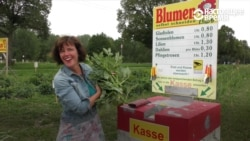 Ни кассира, ни охранника: как в Германии торгуют цветами, доверяя покупателям