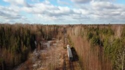 Неизвестная Россия: нескорый поезд Тихвин – Будогощь