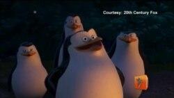 Пингвины получили полный метр