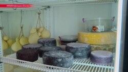 Как фермер в Донецкой области варит итальянский сыр